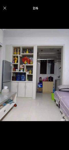 郓城东城国际1室1厅1卫40m²简单装修